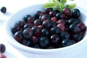 https://obatherbalnusantara.com/fakta-manfaat-acai-berry-untuk-kesehatan-tubuh/