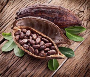 https://obatherbalnusantara.com/nilai-gizi-dan-manfaat-buah-coklat-untuk-kesehatan/