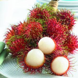 https://obatherbalnusantara.com/manfaat-buah-rambutan-dan-kandungan-gizinya/