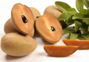 https://obatherbalnusantara.com/kandungan-gizi-buah-sawo-dan-manfaatnya-untuk-kesehatan/