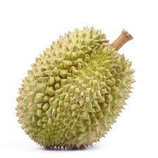 https://obatherbalnusantara.com/fakta-buah-durian-dan-khasitnya-untuk-kesehatan/