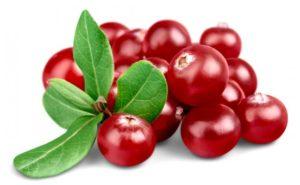 https://obatherbalnusantara.com/manfaat-yang-diberikan-cranberry-untuk-kesehatan/